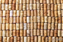 Used Wine Corks - Same Size